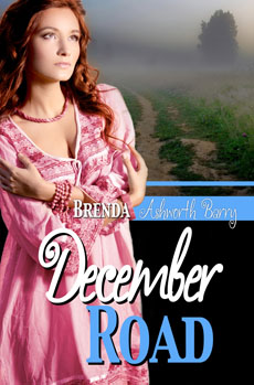 December Road by Brenda Ashworth Barry