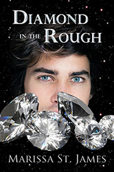 """Diamond in the Rough"" by Marissa St. James"
